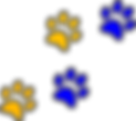 Panther Paws bluegold.png
