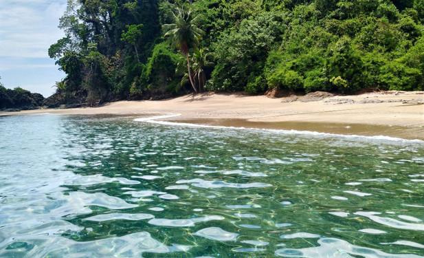 JOUR 9 - Drake / Isla del Caño