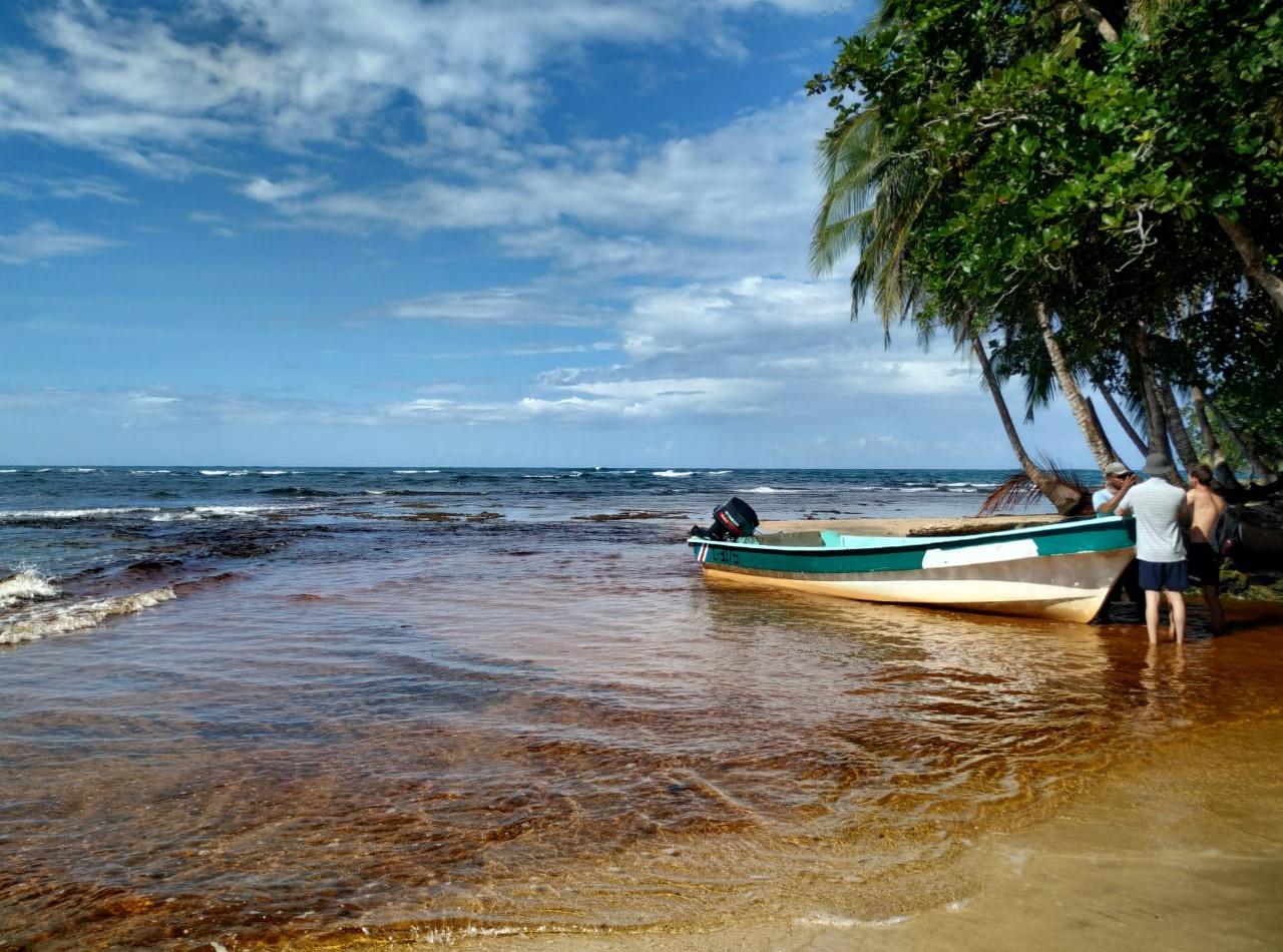 JOUR 5 - Puerto Viejo / Manzanillo (±45min AR)