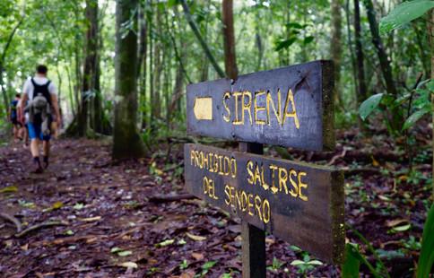 Parc National Corcovado, photo de Romain P.