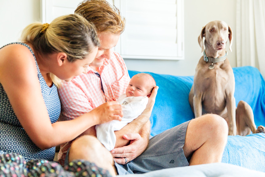 In-home Lifestyle family photography   N
