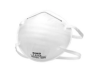N95 Mask_1.PNG