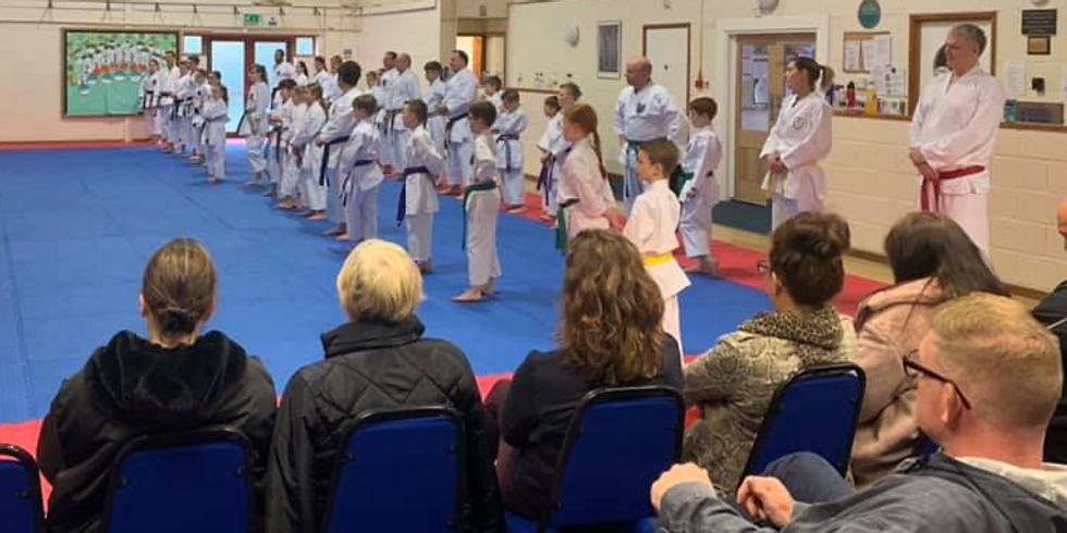 Online Karate Seminar