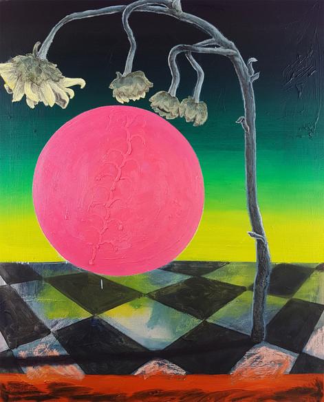 Pink Sun