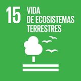 S_SDG goals_icons-individual-rgb-15 - co