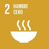 S_SDG goals_icons-individual-rgb-02 - co