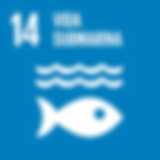 S_SDG goals_icons-individual-rgb-14 - co