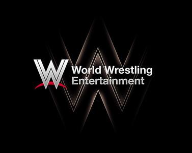 WWE_Logo_Fan_Redesign___Power_by_bluebro
