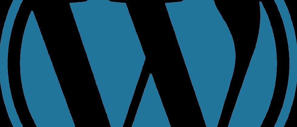 WordPress Management Training + Internship + Career Counselling