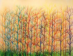Tree Color Scenario