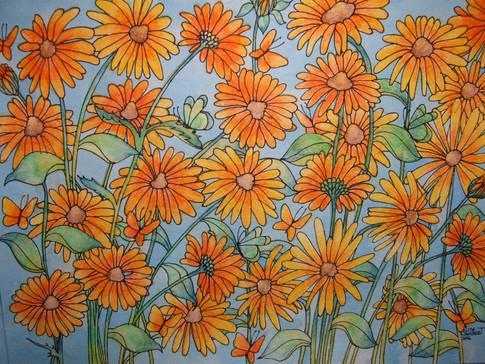 July's Full Blooming Black-Eyed Susans