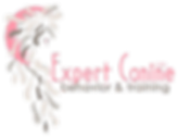 logopinktransparent.png