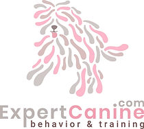 Expert Canine Puppy Training & Proper Socialization