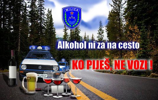 milica ALKOHOL NI ZA NA CESTO.jpg