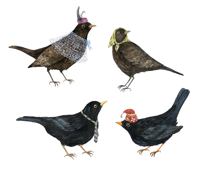 Black Birds with tie and hat