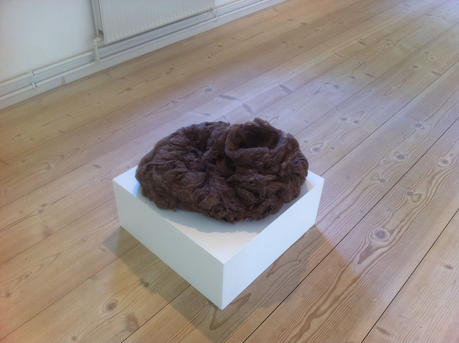 'Collapsed Cocoon', 2011.