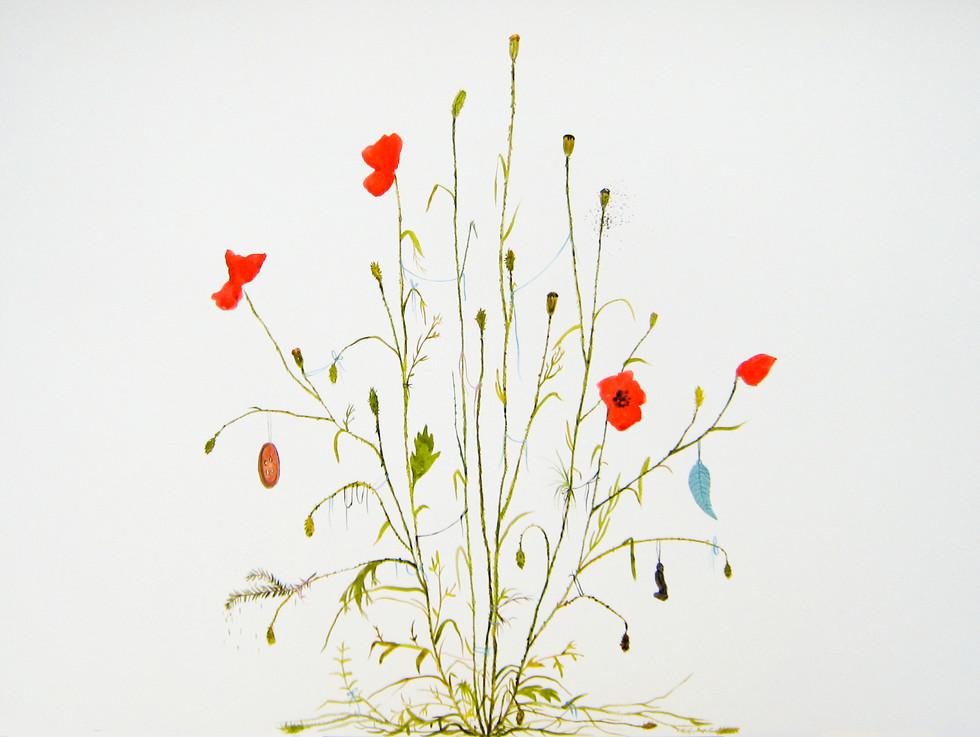 'Findings', 55x75 cm, 2013