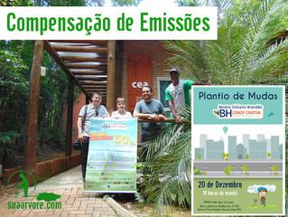 Plantio de Mudas: compensação ambiental