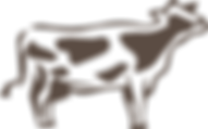polyfat cow-01.png