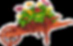 focg_logo_aug11_med-2.png
