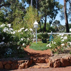 hillview-gardening-landscaping16.jpg