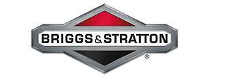 BriggsAndStrattonParts.jpg