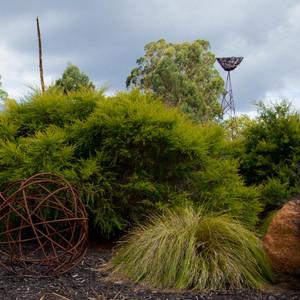 hillview-gardening-landscaping29.jpg