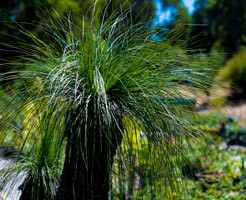 hillview-gardening-landscaping7.jpg
