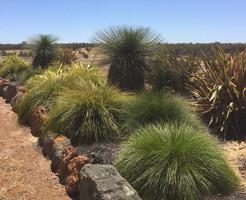 hillview-gardening-landscaping52.jpg