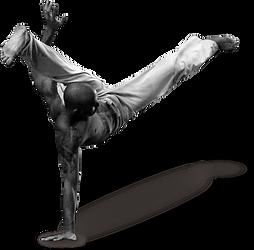 kisspng-capoeira-sport-hapkido-brazil-ca
