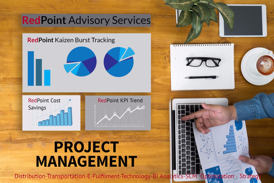 RedPoint Project Management