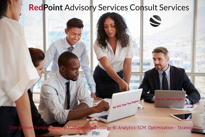 RedPoint Advisory Consult Services
