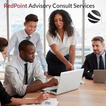 RedPoint Advisory Consult