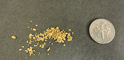 Recovered Gold from a Mining Claim