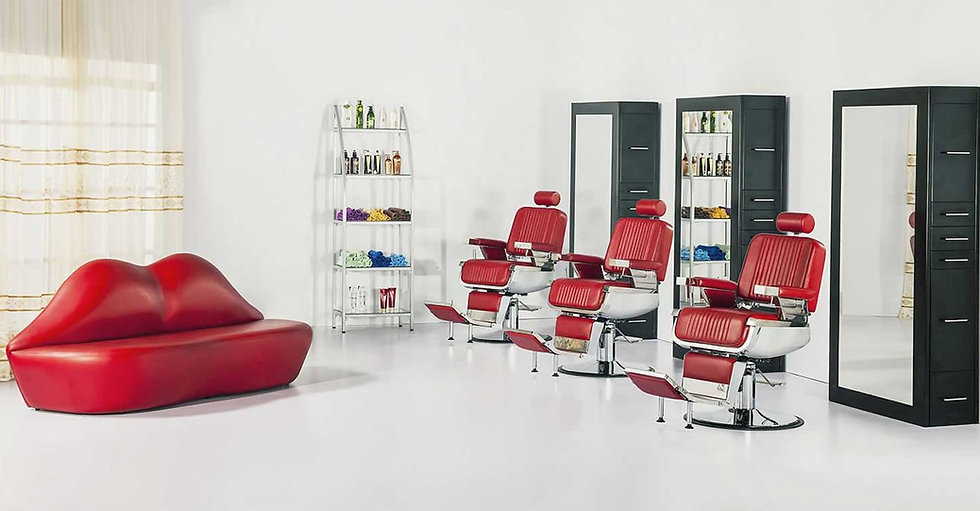Salon2.jpg