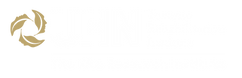 logo-kite-01-transparent-semi-white.png