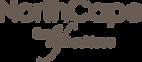 Northcape International logo