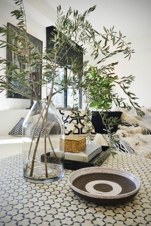 DCAP_SG_Kuttig Residence_Living Room_Det
