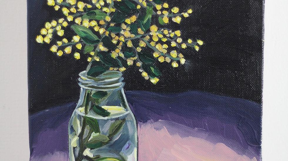 Wattle sprig in a sunny window