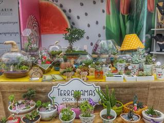 Terramamas Terracity' de bir Mutlu Portakal