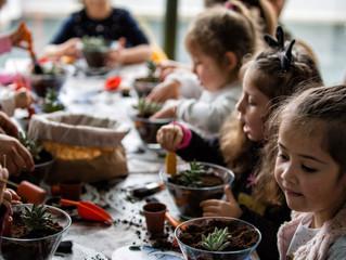 Çocuk Adası Terrarium Etkinliği