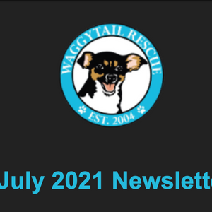 July 2021 Newsletter from operations team! Click to read and subscribe.