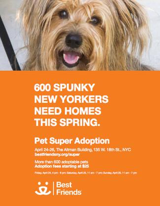 Super Adoption Event April 24th-26th!