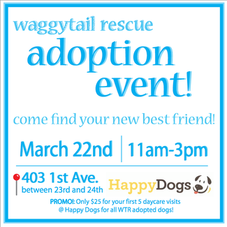Adoption Event March 22nd!