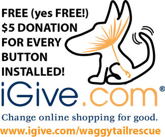 iGive! Waggy of the Week!