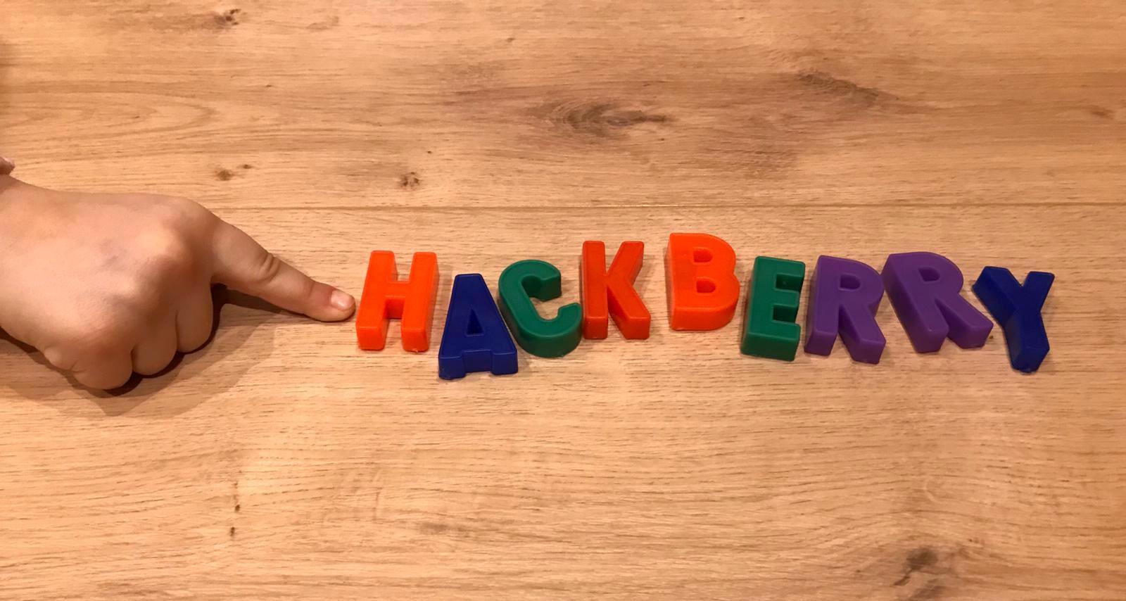 Hackberry Schriftzug Magneto.JPG