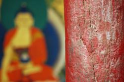 Immagini del buddha
