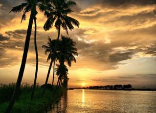 Photo Tour possibili: il Kerala, la perla dell'India del sud