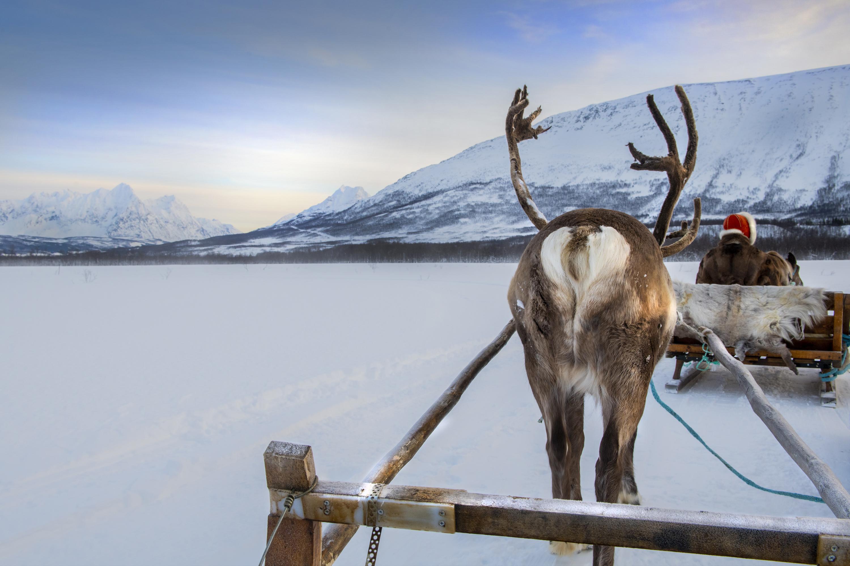 Nella terra dei Sami