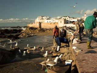 Fotografare in vacanza: porti e pescatori